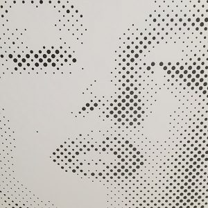 Maryln Image Perforated Screen Close up